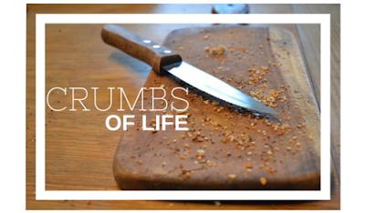 CRUMBS OF LIFE_ ALI R